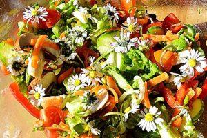 Wildkräutersalat mit Gänseblümchen