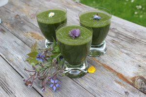 Smoothies aus Wildkräutern - lecker und gesund