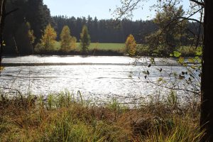 Brunner See